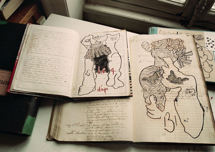 Livres dessinés